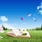 Что нужно чтобы написать книгу