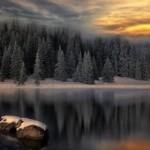 Конкурс Твоя первая книга 4 Виталий Лобановский, О чем шумит лес?