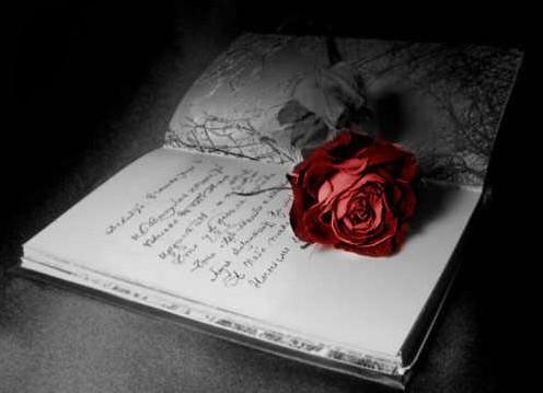 написать книгу про любовь